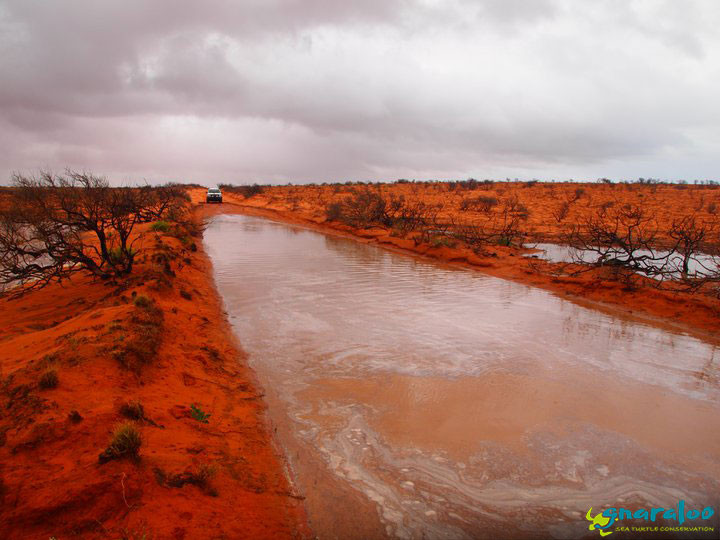 Road Flooded Between 3Mile Camp And Gnaraloo Homestead.