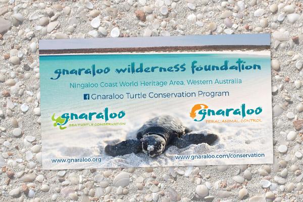Magnet - Gnaraloo Sea Turtle Conservation