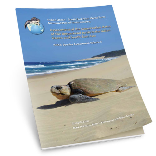 Assessment of the conservation status of the loggerhead turtle in the indian ocean and south east asia