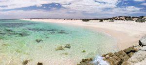 Gnaraloo Cape Farquhar Rookery