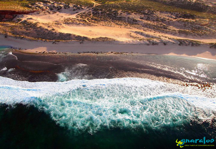 Aerial View Of Gnaraloo Coastline