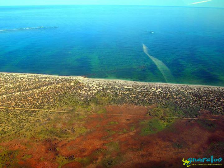 Aerial View Of The Gnaraloo Coastline