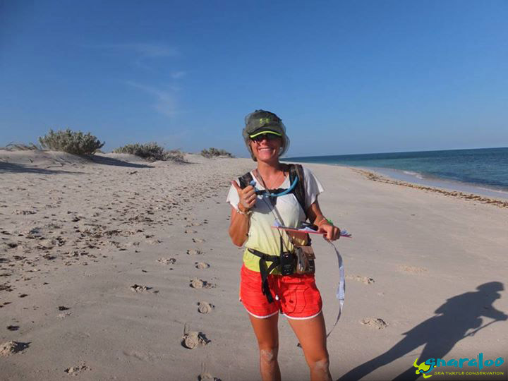 Gnaraloo beach survey