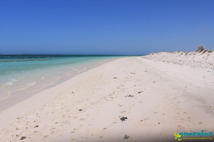 Gnaraloo Coast