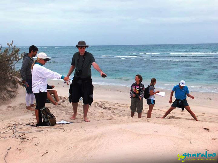 Turtle Tracking Field Excursion With Students At Gnaraloo