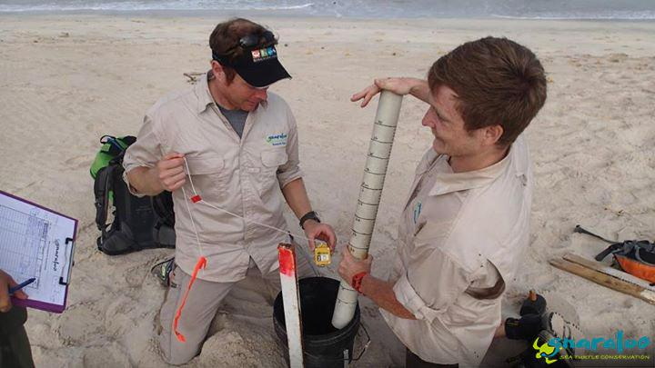 Sand temperature data logger