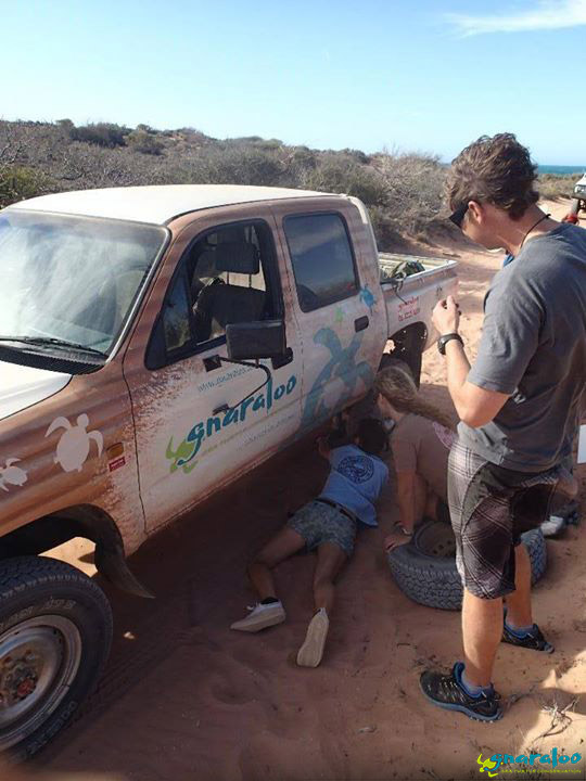 4WD at Gnaraloo