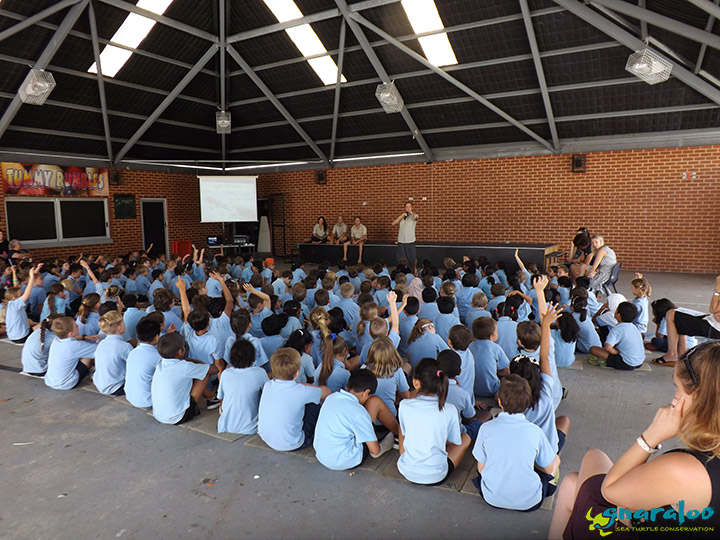Educational Presentation About Sea Turtles, Western Australia