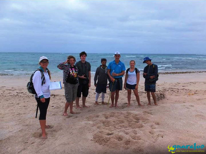 Turtle field excursion