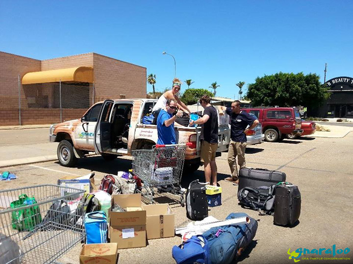 Turtle Team Packing The Ute In Carnarvon