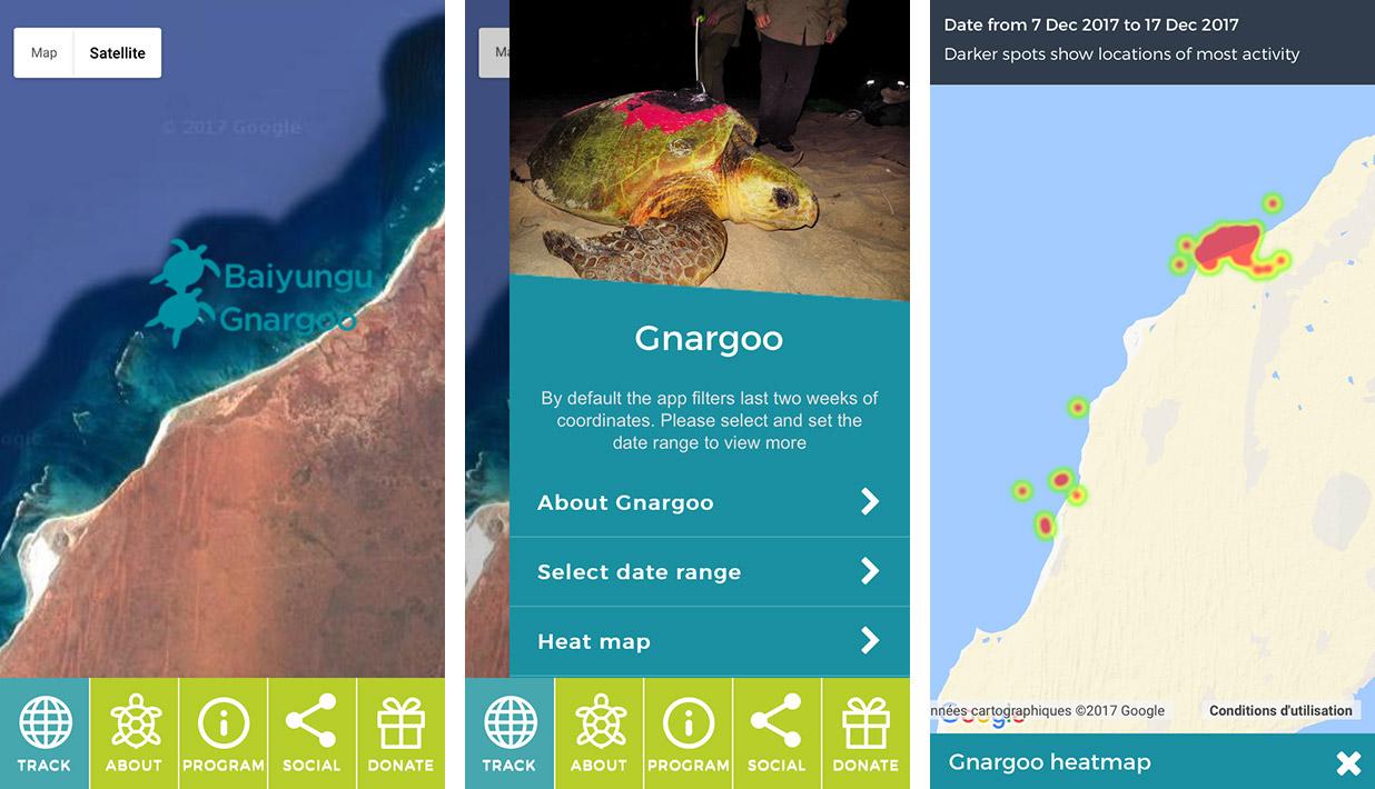 Turtle Tracker App