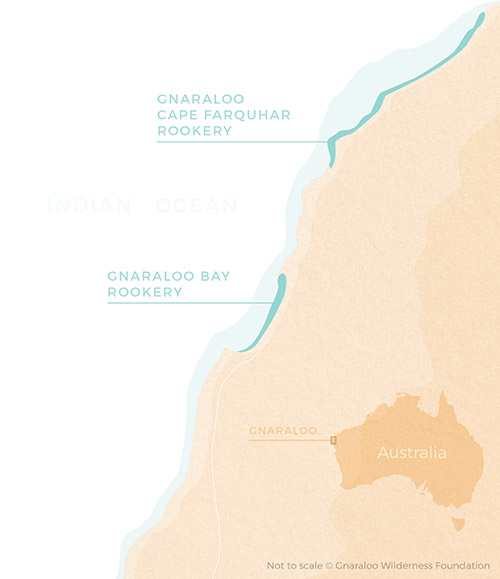Gnaraloo Sea Turtles Rookeries Map