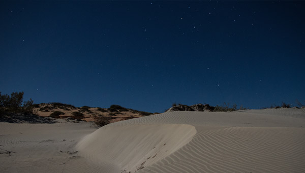 Sea turtles need dark skies, Gnaraloo Wilderness Area