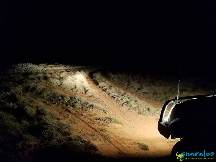 Spotlighting At Gnaraloo Station
