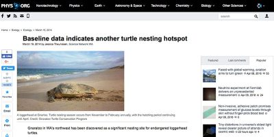 Baseline data indicates another turtle nesting hotspot