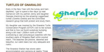 Turtles of Gnaraloo - Animal Ark