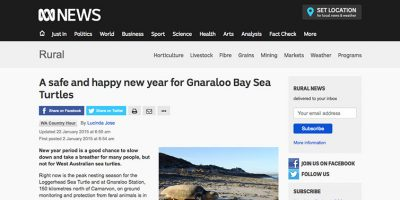 A safe and happy new year for Gnaraloo Bay Sea Turtles