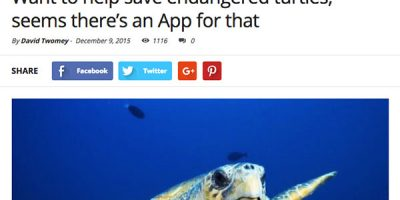 Want to help save endangered turtles, seems there's an App for that