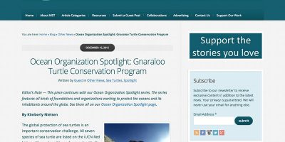 Ocean Organization Spotlight: Gnaraloo Turtle Conservation Program