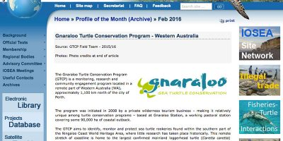 Profile of the Month - Gnaraloo Turtle Conservation Program - Western Australia