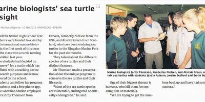 Marine biologists' sea turtle insight