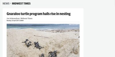 Gnaraloo turtle program hails rise in nesting