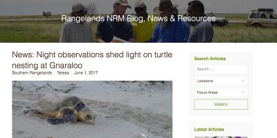 News: Night observations shed light on turtle nesting at Gnaraloo