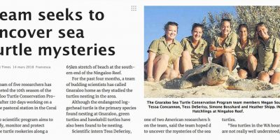 Team seeks to uncover sea turtle mysteries