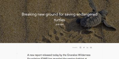 Breaking new ground for saving endangered turtles