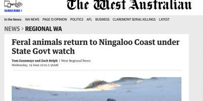 Feral animals return to Ningaloo Coast under State Govt watch