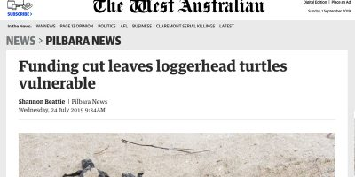 Funding cut leaves loggerhead turtles vulnerable