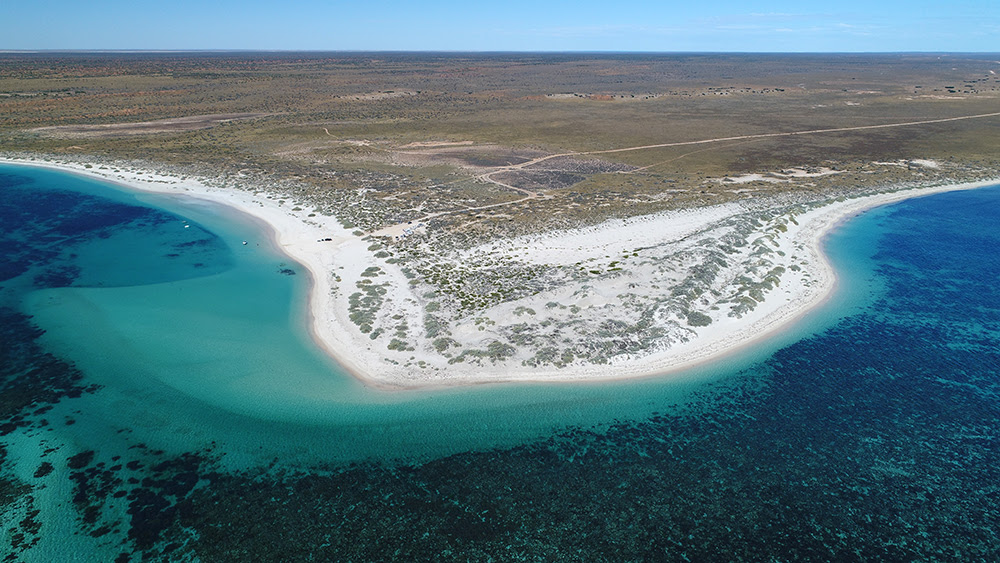 The GWF calls for Gnaraloo Bay and Gnaraloo Cape Farquhar to be recognized in legislation as turtle nesting sanctuaries.