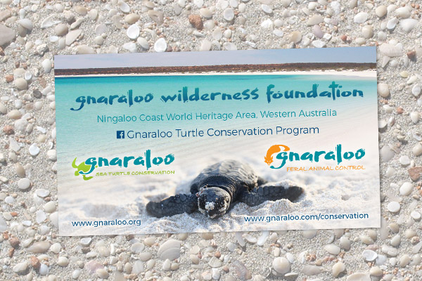 Magnet - Gnaraloo Sea Turtle Conservation