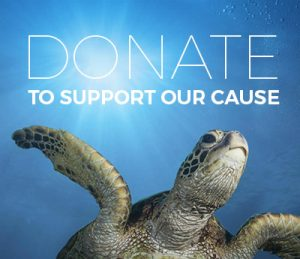 Donate to the Gnaraloo Wilderness Foundation