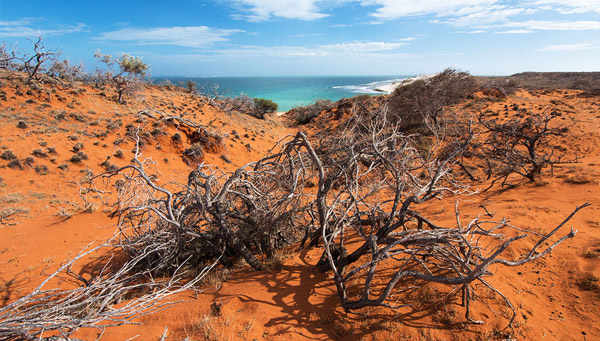 Gnaraloo, Ningaloo Coast, Western Australia