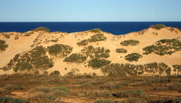 Gnaraloo Sand Dunes