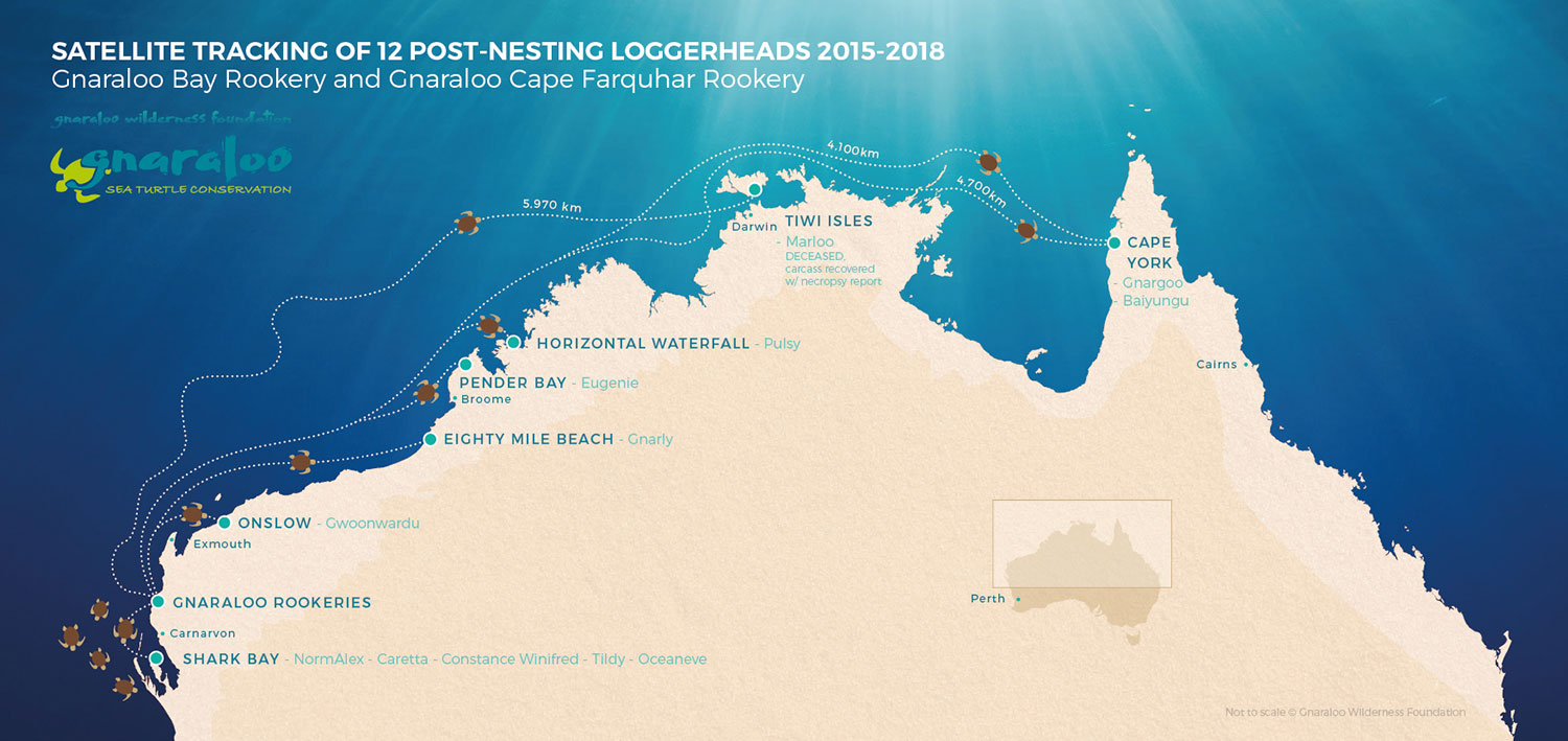 MAP - Satellite tracking of 12 post-nesting loggerheads sea turtles 2015-2018 - Gnaraloo Bay Rookery and Gnaraloo Cape Farquhar Rookery - Western Australia