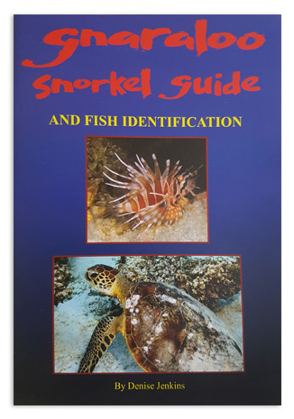 Gnaraloo Snorkel Guide by Denise Jenkins