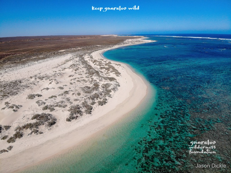 Turtles under threat from 4WD traffic at Gnaraloo