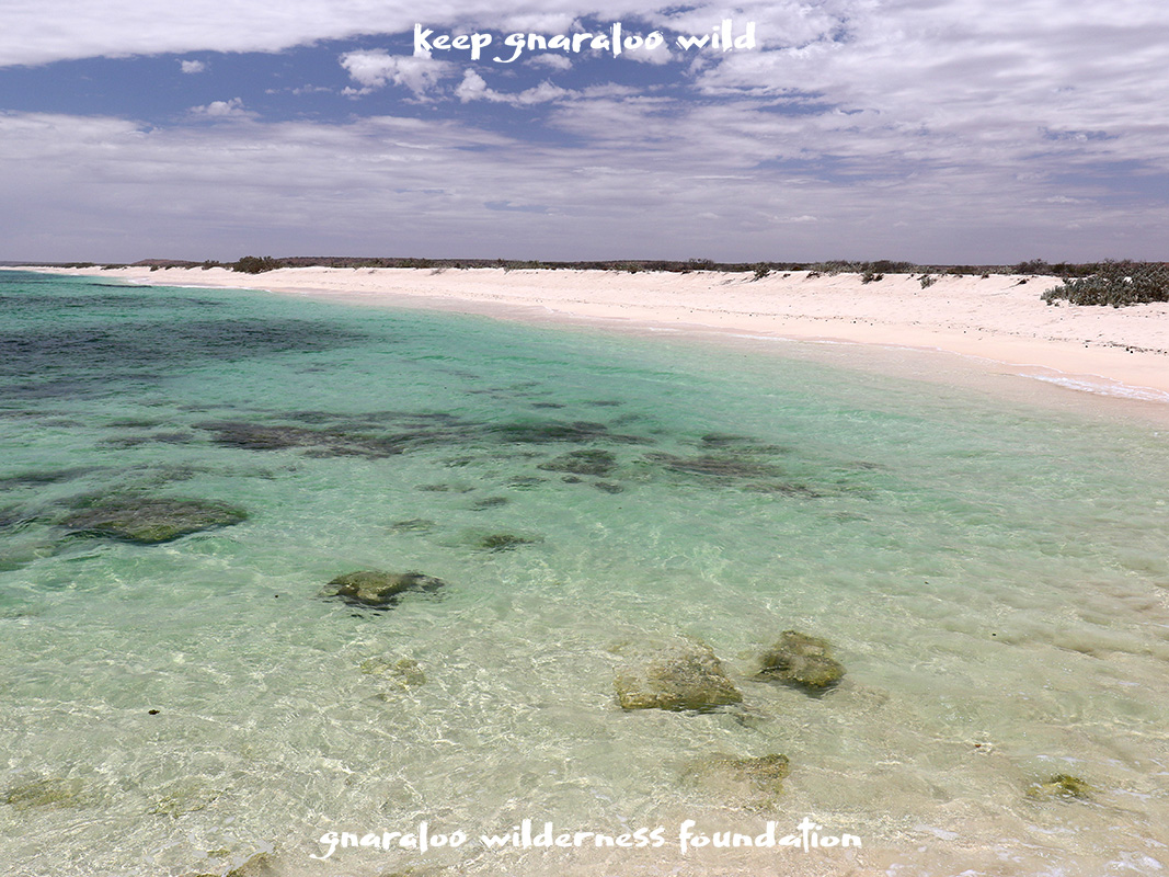 Gnaraloo Cape Farquhar Remains Exposed With World Heritage Values Being Lost